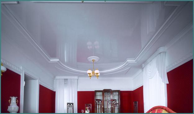 Красивые натяжные потолки для зала, фото-2